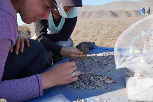 Image of students observing archaeology findings on sand